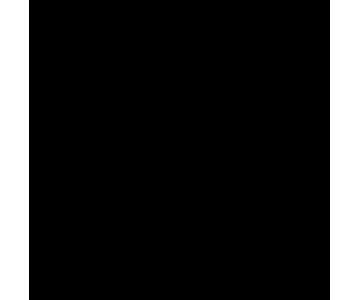 blitzschnelle_lieferung-2x.png